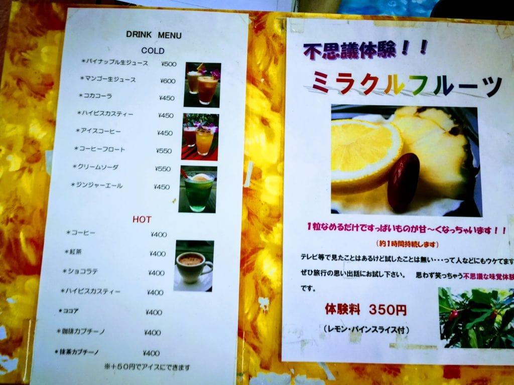 下賀茂熱帯植物園 生ジュース